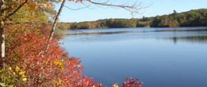 Fall Noanet Pond
