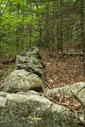 Hale Reservation Trails