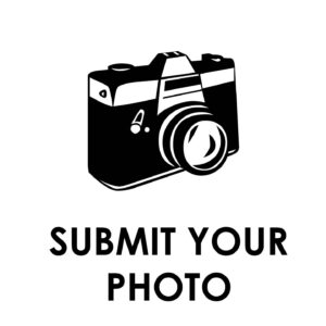 Submit your Photo to Hale
